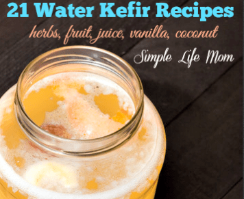 21 Water Kefir Recipes by Simple Life Mom