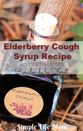 Elderberry Cough Syrup Recipe from Simple Life Mom