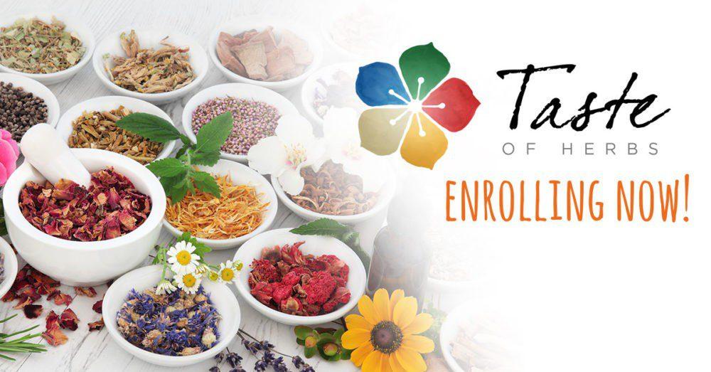 Taste Of Herbs Now Enrolling - Elderberry Cough Syrup Recipe