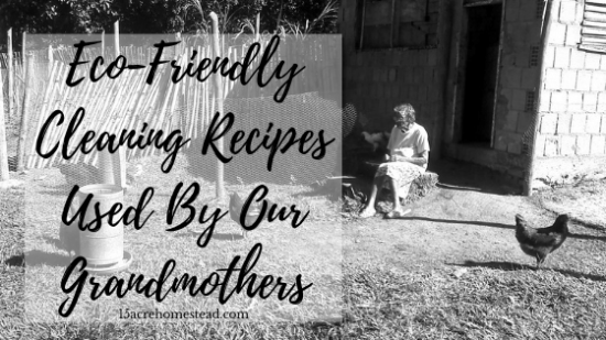 Homestead Blog Hop Feature - Eco-Friendly-Cleaning-Recipes-Used-By-Our-Grandmothers