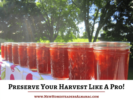 Homestead Blog Hop Feature - Hoe to Preserve your harvest like a pro