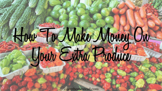 Homestead Blog Hop Feature - How-To-Make-Money-On-Your-Extra-Produce