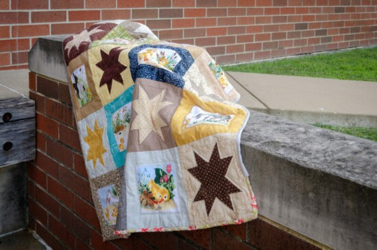 Homestead Blog Hop Feature - Fuzzy Ducklings Quilt