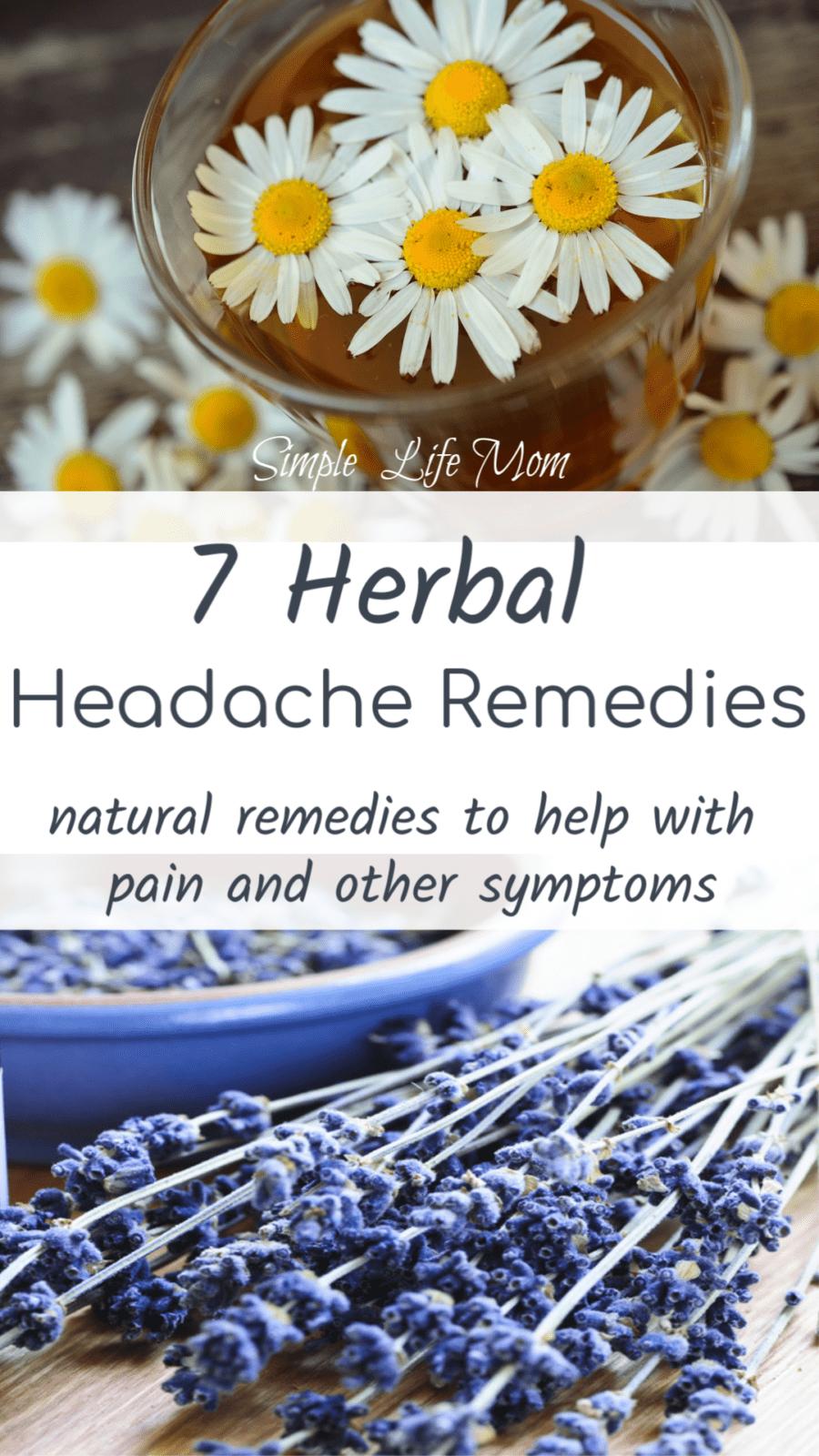 7 Herbal Headache Remedies