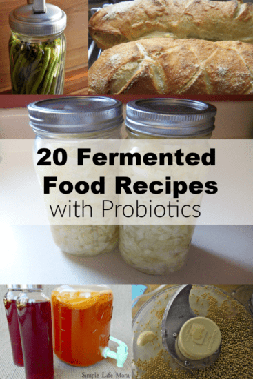 20 Fermented Food Recipes with Probiotics from Simple Life Mom