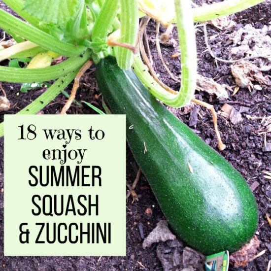 Homestead Blog Hop Feature - 18 Ways to Enjoy Summer Squash and Zucchini