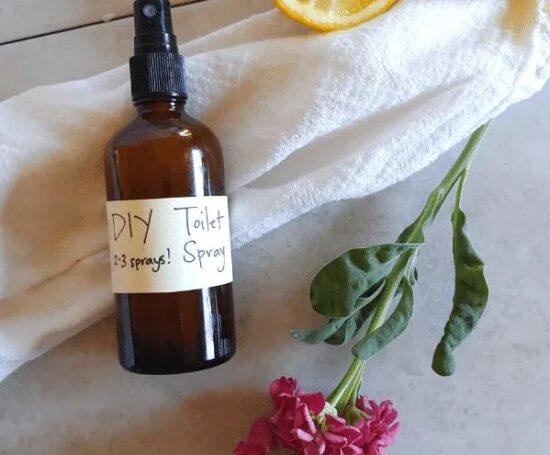 Homestead Blog hop Feature - DIY Toilet Spray