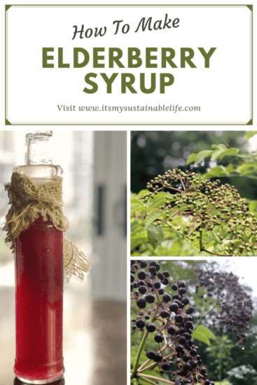 Homestead Blog Hop Feature - Elderberry-Syrup-A-Robust-Cold-Flu-Remedy
