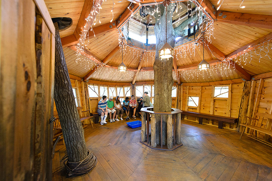 Tree House interior image