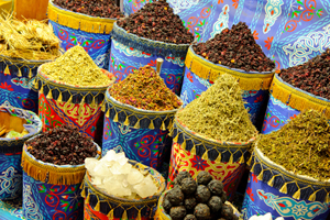 foreign language study abroad - explore markets in Egypt