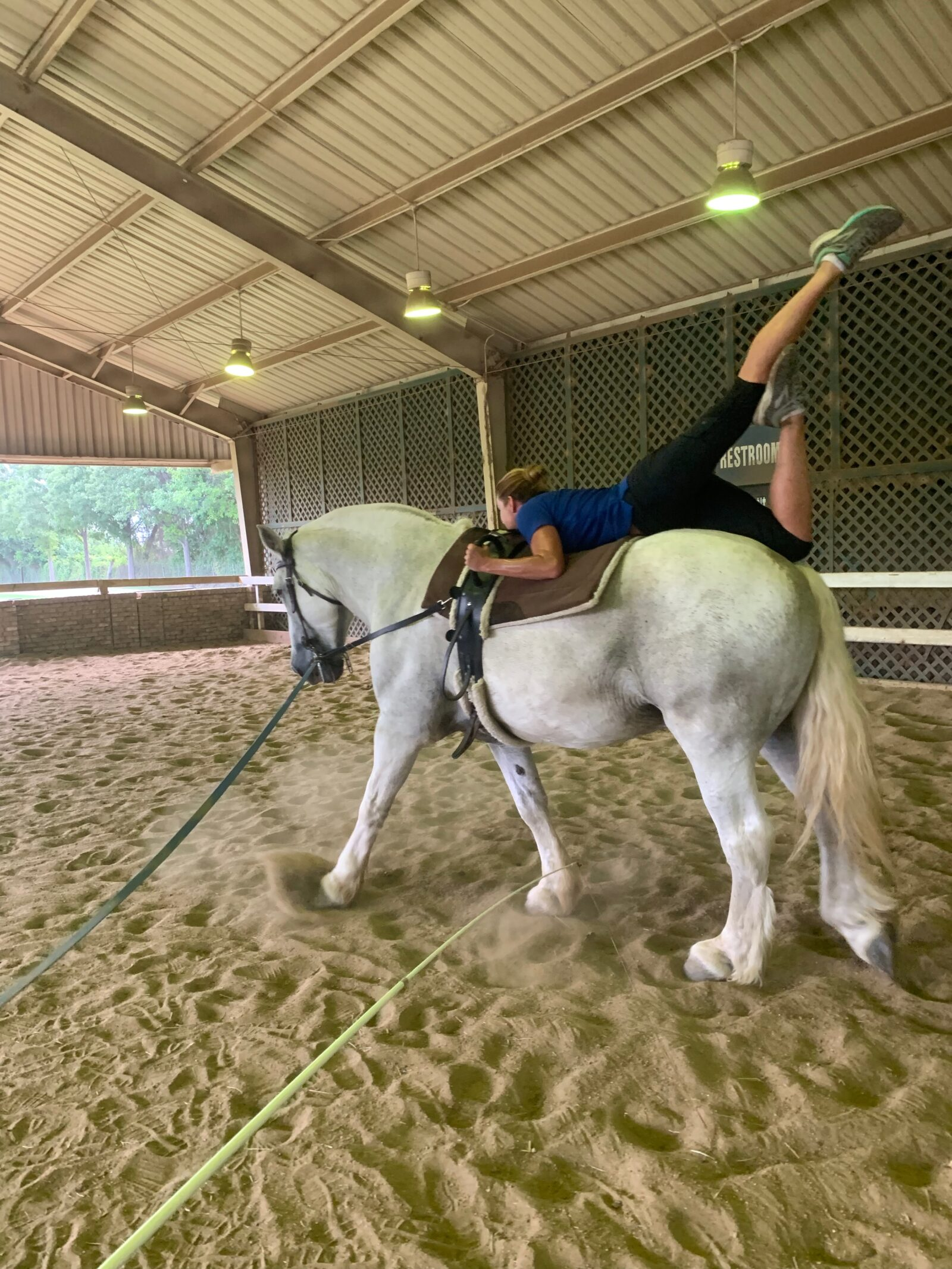 Equestrian vaulting