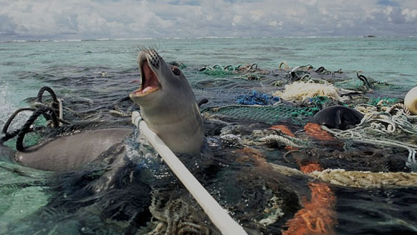 plastic in ocean