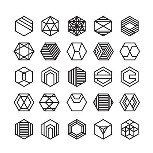 hexagon geometric vector icon , ornament