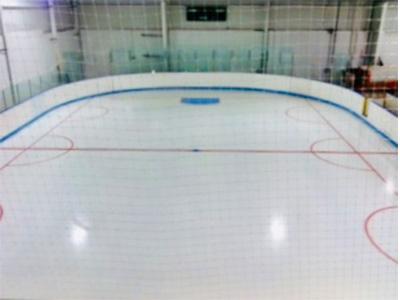 The Bog Ice Skating Rink