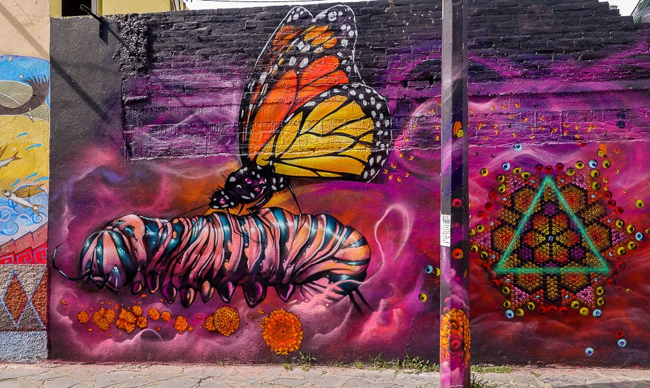 mexico-street-art san miguel de allende