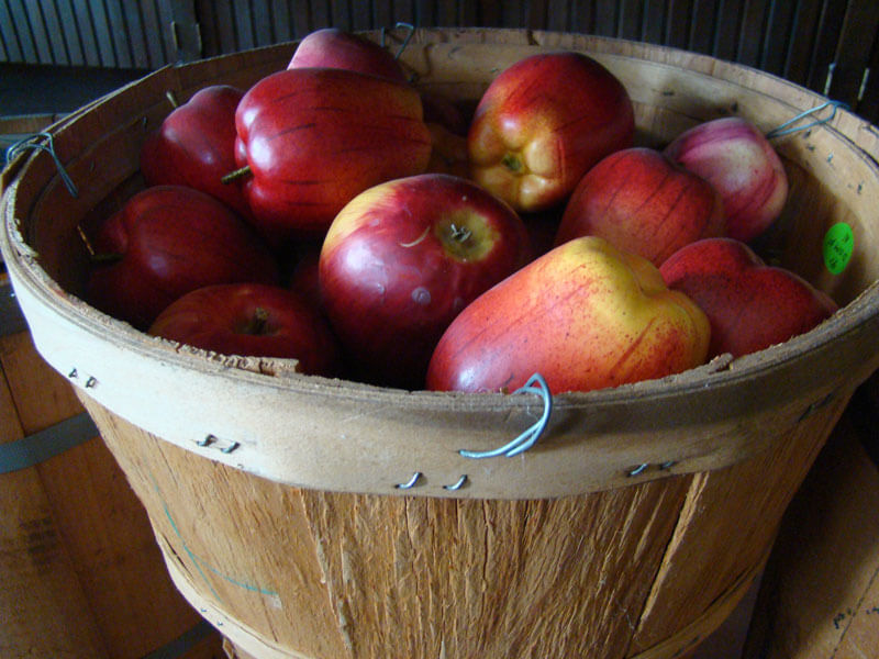 Basket-of-Apples