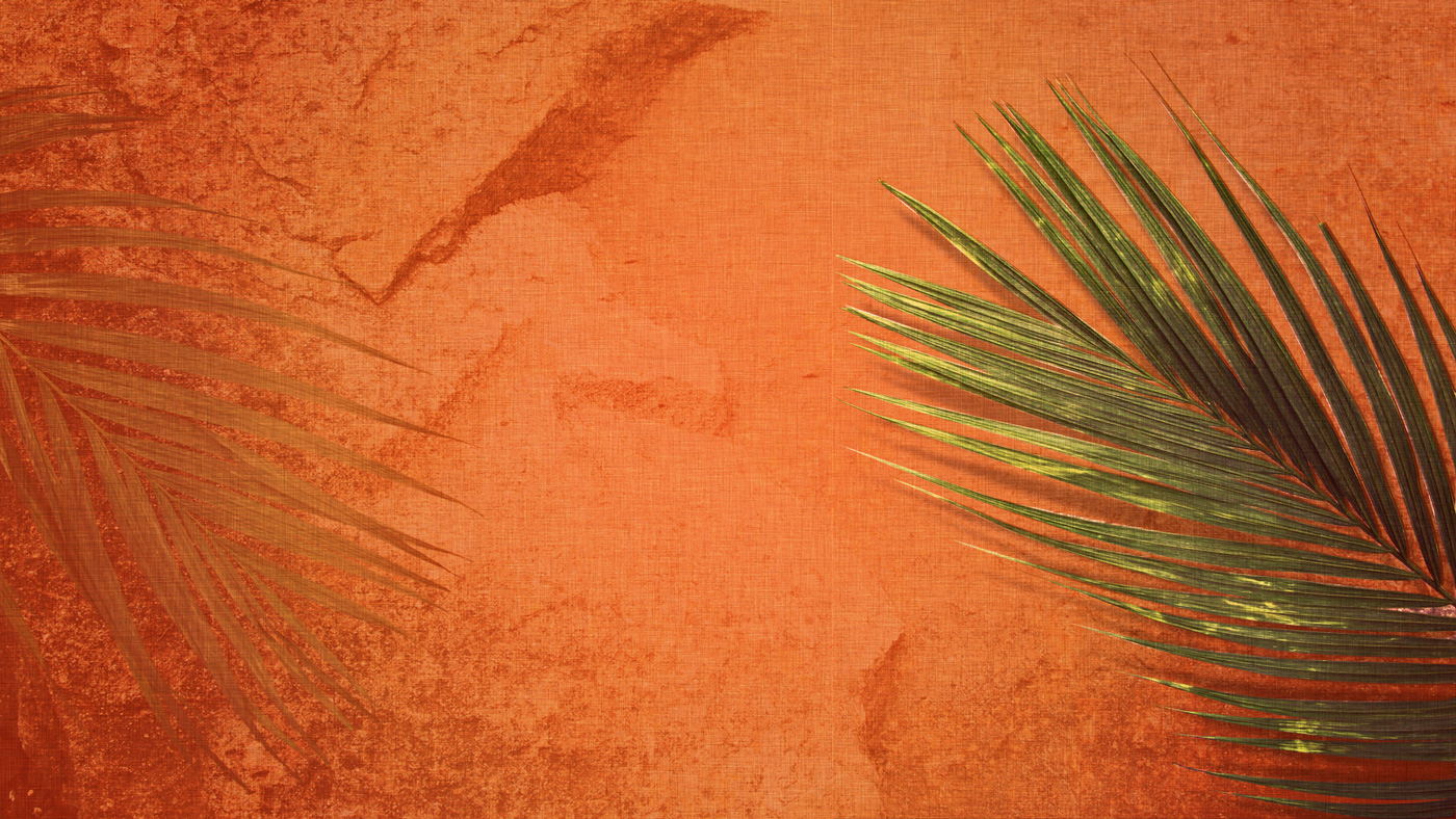 Holy Week – Day 1: Palm Sunday – What's The Buzz?