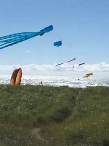Kites on Long Beach