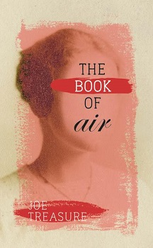The Book of Air by Joe Treasure