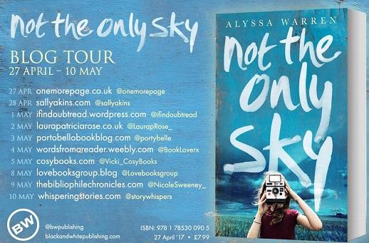 Not the Only Sky by Alyssa Warren
