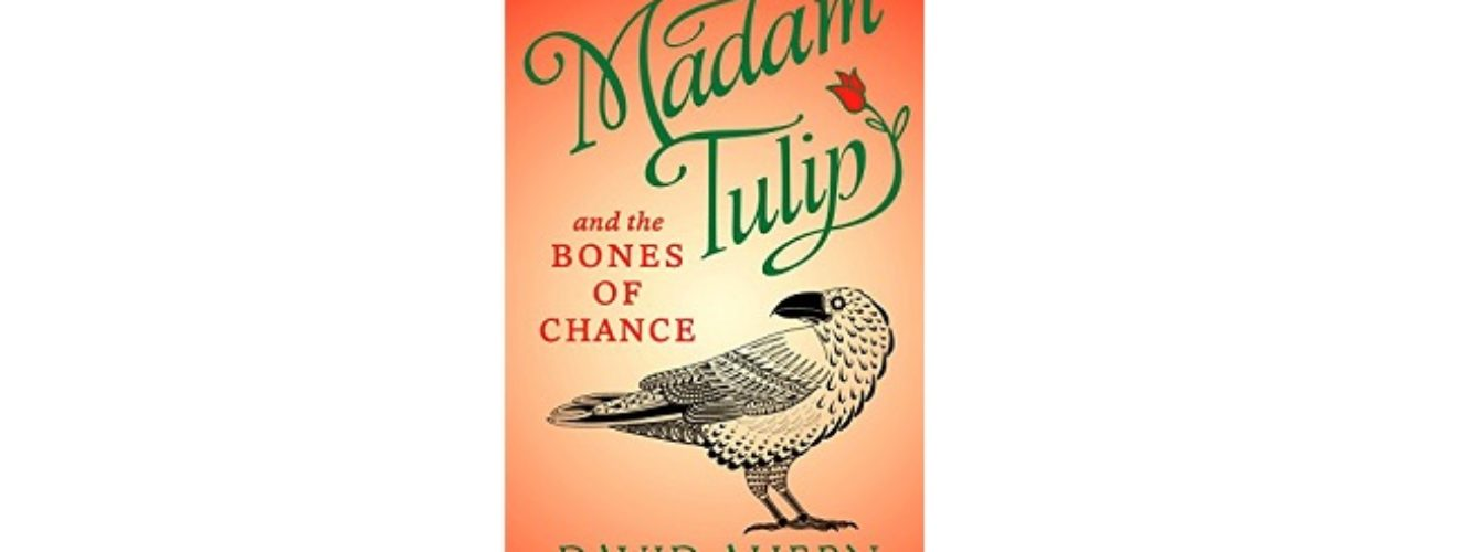 Feature Image - Madam Tulip and the Bones of Chance by David Ahern