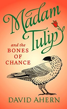 Madam Tulip and the Bones of Chance by David Ahern