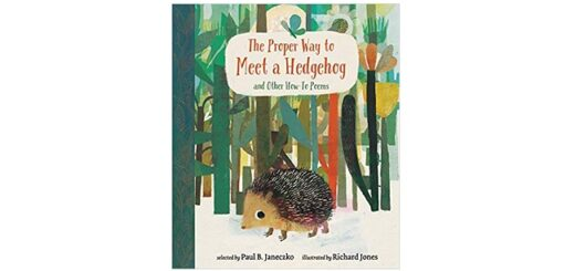 Feature Image - The Proper Way to Meet a Hedgehog