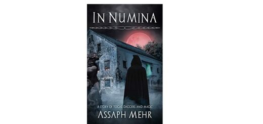 Feature Image - In Numina by Assaph Mehr