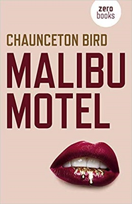 Malibu Motel by Chaunceton Bird