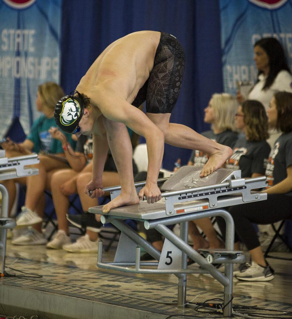 Boys' swim, dive team compete in state championship