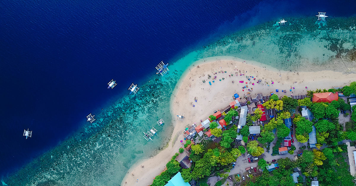 Aerial view of beach with lush green tree and blue water