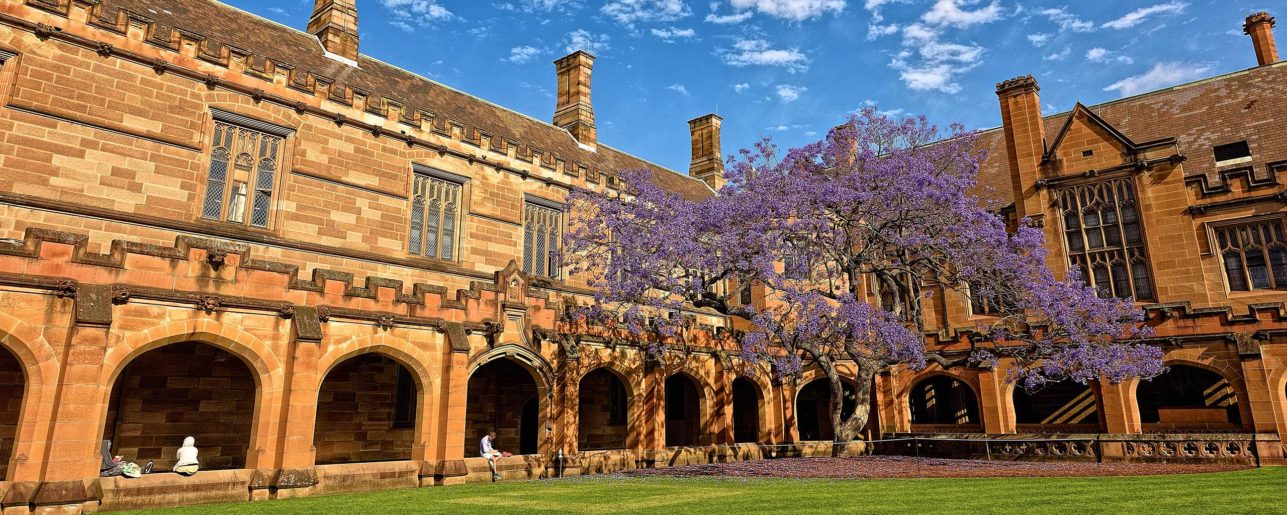 University of Sydney Quadrangle building with purple tree in courtyard