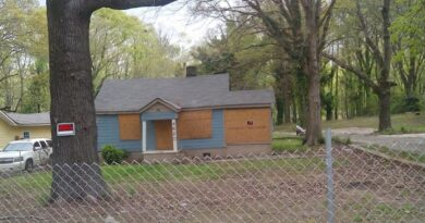 south fulton - cdbg grant - blight