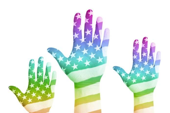 VA LGBT Veterans Survey