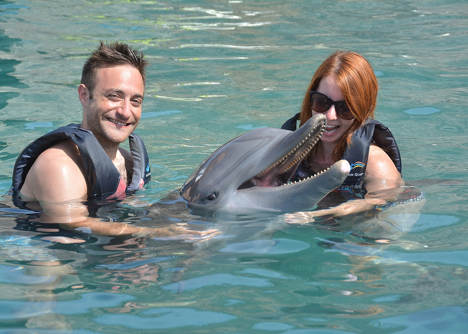 Dolphin Quest Affords Memorable Way to Experience Bermuda