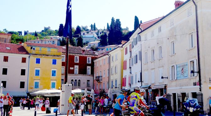 Lipizaner Horses, UNESCO Natural Monument, Medieval City of Piran Complete the Gems of 8-day 'Emerald' Biketour of Slovenia