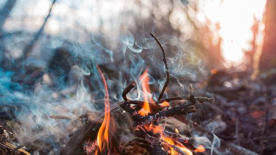 Fan the Flame