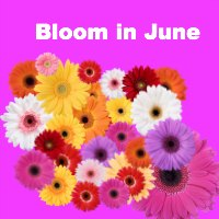Bloom In June With A Free Confidence Coaching Session
