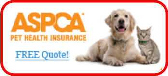 Pet Health Insurance Quote
