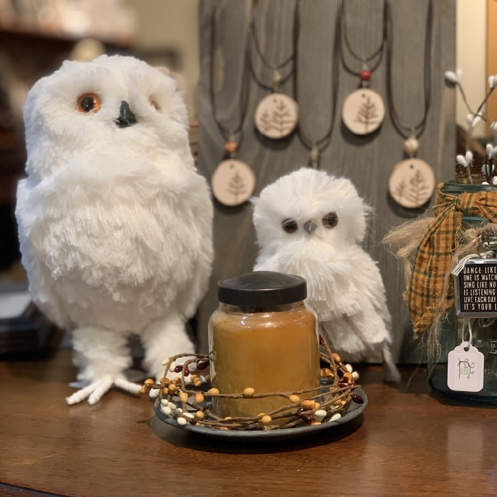 owl decor candle and wood jewelry gift items