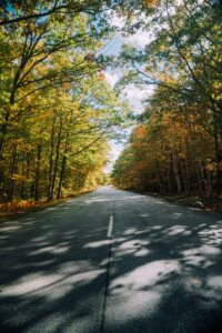 Fall Foliage | Maine Trips