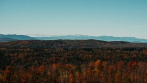 leaf peeping in maine