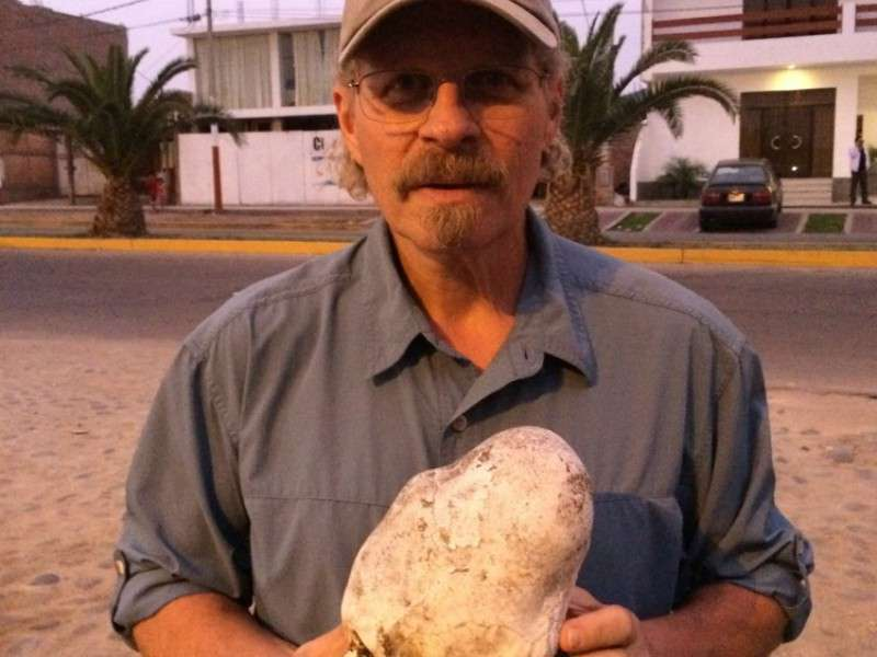 L. A. Marzulli holding the elongated skull