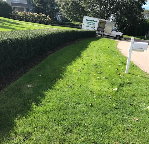 truck hedge
