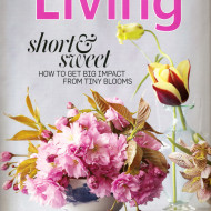FREE One (1) Year Subscription to Martha Stewart Living Magazine – Available Again!