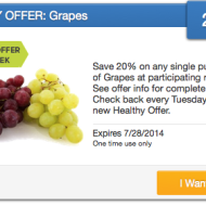 SavingStar: 20% Cash Back on Single Purchase of Grapes + Delicious Summer Recipes Using Grapes