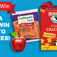 "Horizon ""Spin to Win"" Back-to-School Sweepstakes: Win $50 Visa Gift Cards, Horizon Lunchboxes and More!"
