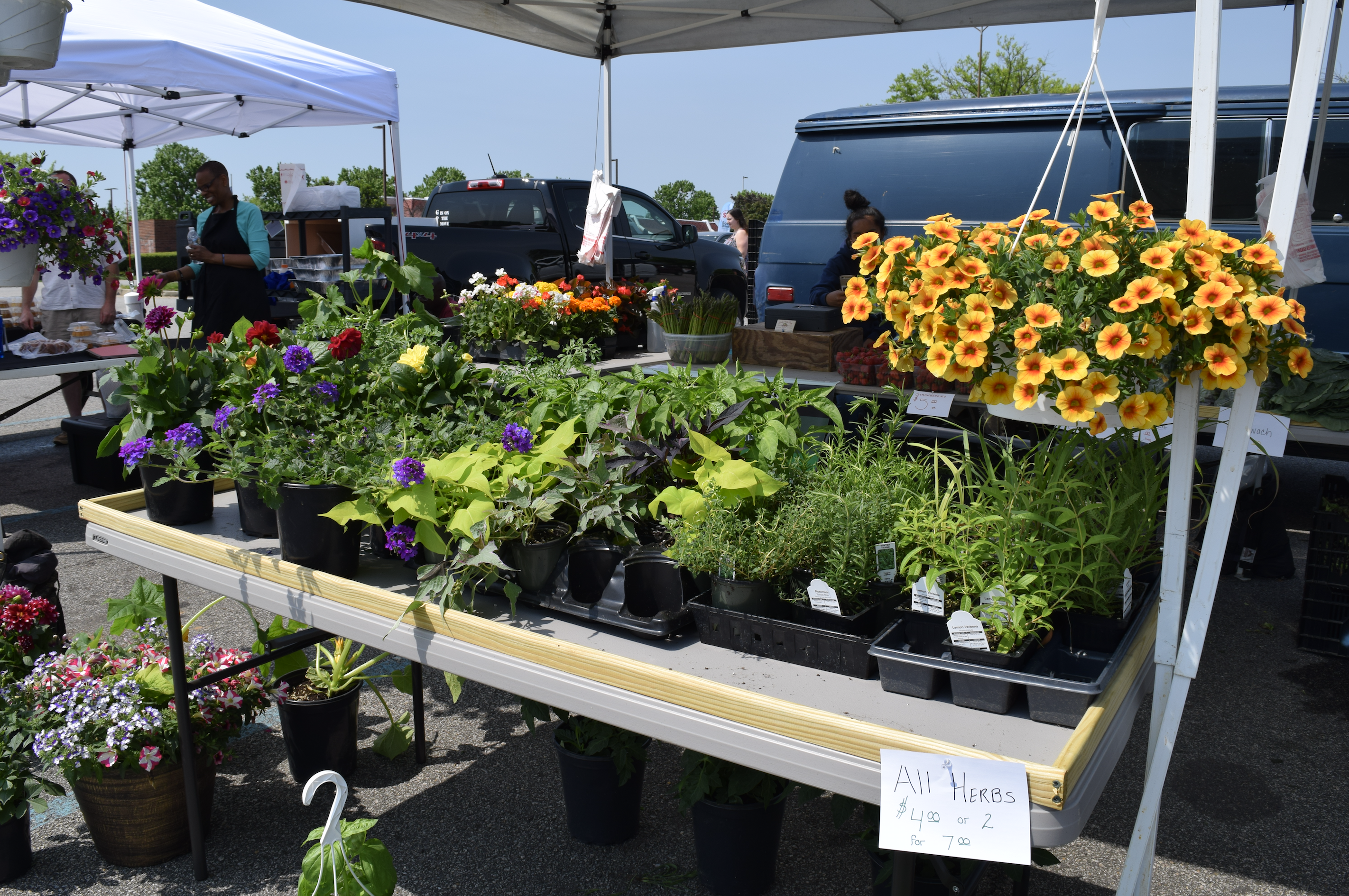 """Find fresh plants and flowers and herbs at """"The Market at Potomac Mills"""" in Woodbridge, Virginia- a farmers market open from late April to late October, 2017."""