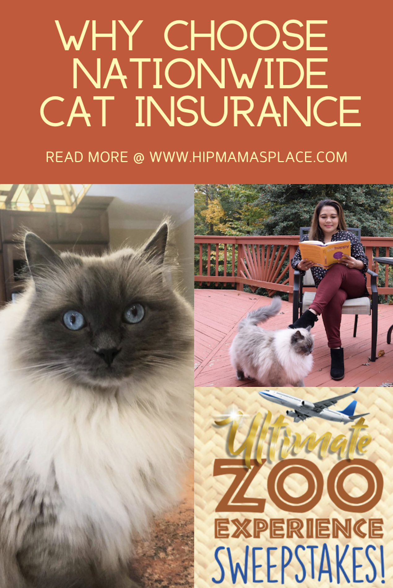 It's not easy to think about it, but the truth is that our pets could get hurt or sick too. #AD Read about Nationwide and their cat insurance on the blog today! Plus, get a chance to win fantastic prizes during the Ultimate Zoo Experience sweepstakes! #JungleCats2019 #petinsurance #catinsurance #catlovers #furbaby #cutestcat