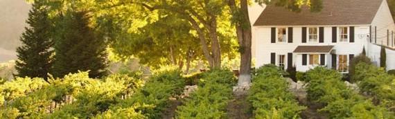 Visit HammerSky Vineyards and Inn